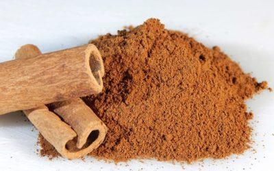 Cynamon (Cinnamomum verum, Cinnamomum cassia)