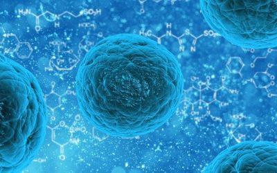 AHCC wspomaga leczenie infekcji szyjki macicy wirusem HPV