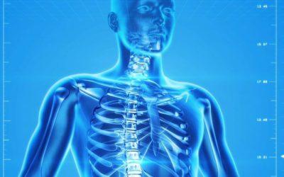 Izoflawony sojowe (genisteina) pomocne w leczeniu i profilaktyce osteoporozy